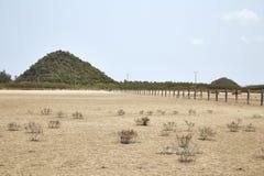 Desierto con las montañas Foto de archivo