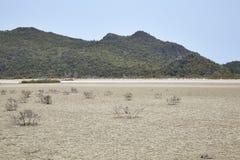 Desierto con las montañas Imágenes de archivo libres de regalías