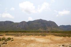 Desierto con las montañas Imagenes de archivo