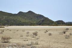 Desierto con las montañas Fotos de archivo libres de regalías
