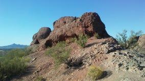 Desierto con las rocas rojas y el Larrea floreciente Tridentata Plantsin Phoenix, Arizona Foto de archivo libre de regalías
