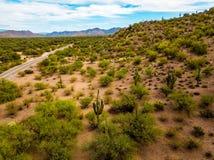 Desierto con los cactus y la foto de la antena de los arbustos Imagenes de archivo