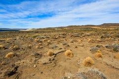 Desierto de Argentina Fotografía de archivo libre de regalías