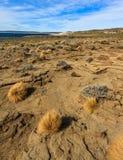 Desierto de Argentina Foto de archivo libre de regalías