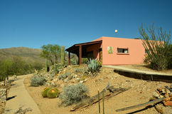 Desierto de Arizona Foto de archivo libre de regalías