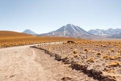 Desierto de Atacama Fotografía de archivo