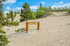 Desierto de Carcross en el Yukón Canadá Imágenes de archivo libres de regalías