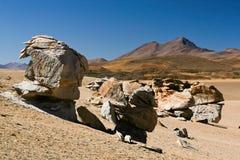 Desierto de Dali Foto de archivo libre de regalías