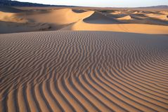 Desierto de Gobi Fotos de archivo libres de regalías