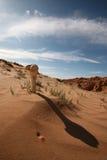 Desierto de Gobi despiadado Imágenes de archivo libres de regalías