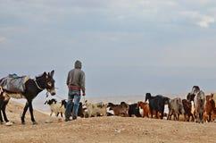 Desierto de Judaean Imagen de archivo libre de regalías