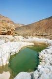 Desierto de Judea - lecho de un río seco Zeelim. foto de archivo