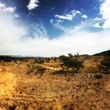 Desierto de Judean Imagen de archivo libre de regalías
