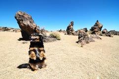 Desierto de la arena y de las rocas fotos de archivo