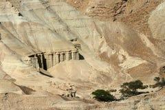 Desierto de la biblia en la costa del mar muerto Imagen de archivo libre de regalías