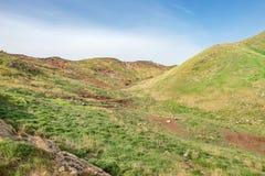 Desierto de la montaña, colina llana del prado del campo con la hierba verde y suelo rojo Imágenes de archivo libres de regalías