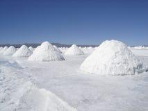 Desierto de la sal Imágenes de archivo libres de regalías