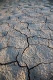 Desierto de la tierra Imagen de archivo libre de regalías