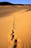 Desierto de Libia Foto de archivo libre de regalías