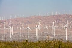 Desierto de Mojave Fotos de archivo libres de regalías