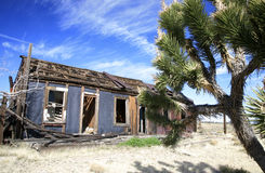 Desierto de Mojave fotografía de archivo