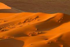 Desierto de Namibia Imágenes de archivo libres de regalías