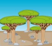 Desierto de piedra árido y árbol exótico de Drakonovo ilustración del vector