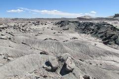 Desierto de piedra gris Imágenes de archivo libres de regalías