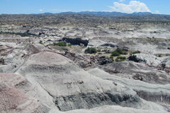 Desierto de piedra gris Foto de archivo