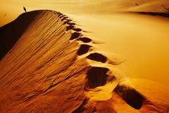 Desierto de Sáhara fotos de archivo libres de regalías