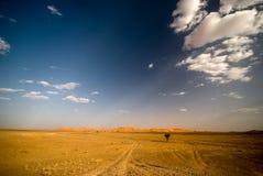 Desierto de Sáhara en Marruecos Fotos de archivo libres de regalías