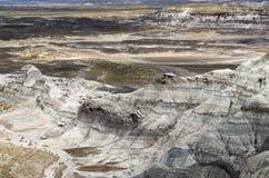 Desierto de Sandy Foto de archivo libre de regalías