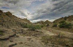 Desierto de Tatacoa en Colombia Imagen de archivo