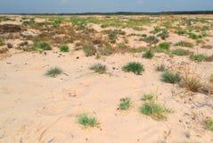 Desierto del ³ w de Ä™dà del 'de BÅ Imagen de archivo