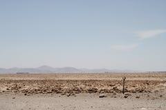 Desierto del EL del en de Estacionamiento Fotografía de archivo