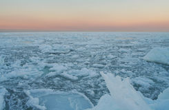 Desierto del hielo Imágenes de archivo libres de regalías