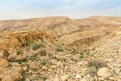 Desierto del Néguev del invierno Imágenes de archivo libres de regalías