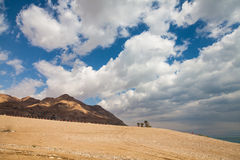 Desierto del Néguev - Israel Fotos de archivo libres de regalías