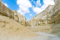 Desierto del Néguev Israel Imagen de archivo libre de regalías