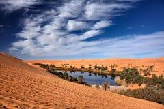 Desierto del oasis Imagenes de archivo