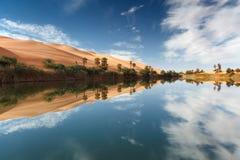 Desierto del oasis Foto de archivo
