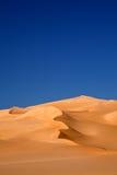 Desierto del oasis Imágenes de archivo libres de regalías