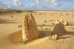 Desierto del pináculo Fotos de archivo