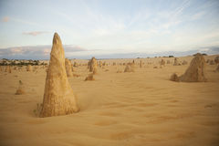 Desierto del pináculo Fotos de archivo libres de regalías