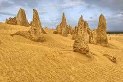 Desierto del pináculo Imagenes de archivo
