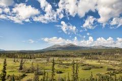 Desierto del territorio del Yukón foto de archivo libre de regalías