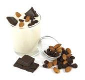 Desierto del yogur con el chocolate, la almendra y las pasas Fotos de archivo libres de regalías