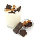 Desierto del yogur con el chocolate, las almendras y las pasas Imágenes de archivo libres de regalías