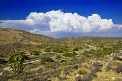 Desierto en al oeste de los E.E.U.U. Imagenes de archivo