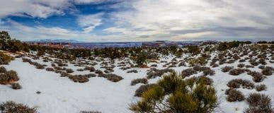 Desierto en Arizona, los E.E.U.U. del invierno Imagen de archivo libre de regalías